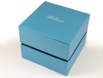 Zdjęcie pudełka i gwarancji BALTICUS Sky Variety